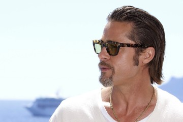 Hollywood actor Brad Pitt side profile