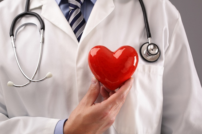doctor shows healthy heart